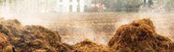 Növényápolás – trágya